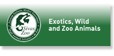 Sivas Zoo - exotics, wild and zoo animals
